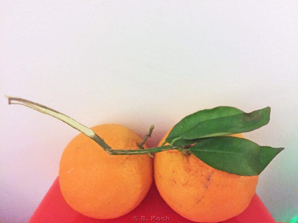mallorca_orangen